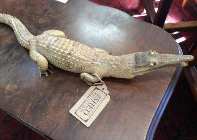 Crocodile Metal statue